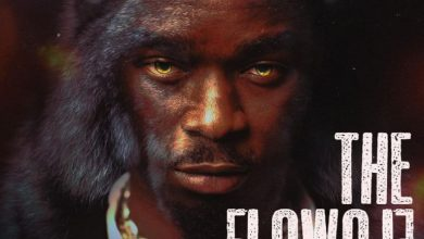 Photo of Flowolf Ft Dremo – My Other Pillow